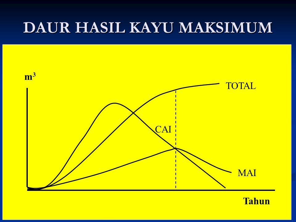 DAUR HASIL KAYU MAKSIMUM MAI CAI TOTAL Tahun m3m3