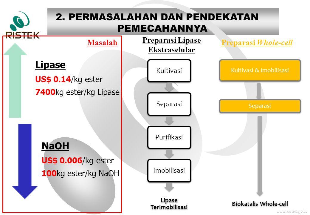 www.ristek.go.id Lipase US$ 0.14/kg ester 7400kg ester/kg Lipase NaOH US$ 0.006/kg ester 100kg ester/kg NaOH KultivasiSeparasiPurifikasiImobilisasi Li