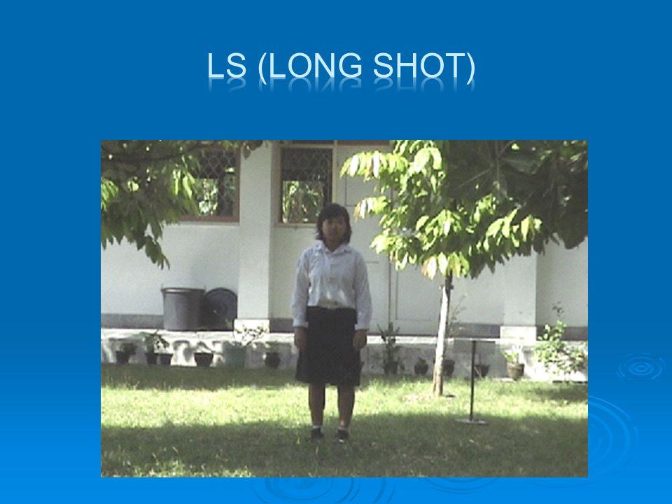  MLS (Medium Long Shot)  Shot yang menyajikan bidang pandangan yang lebih dekat dari pada long shot, obyekmanusia biasanya ditampilkan dari atas lutut sampai di atas kepala.