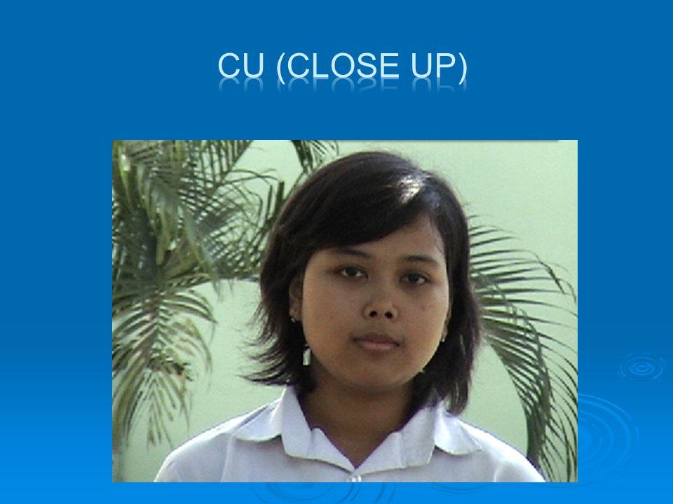  BCU ( Big Close Up)  Shot yang menampilkan bagian tertentu dari tubuh manusia.