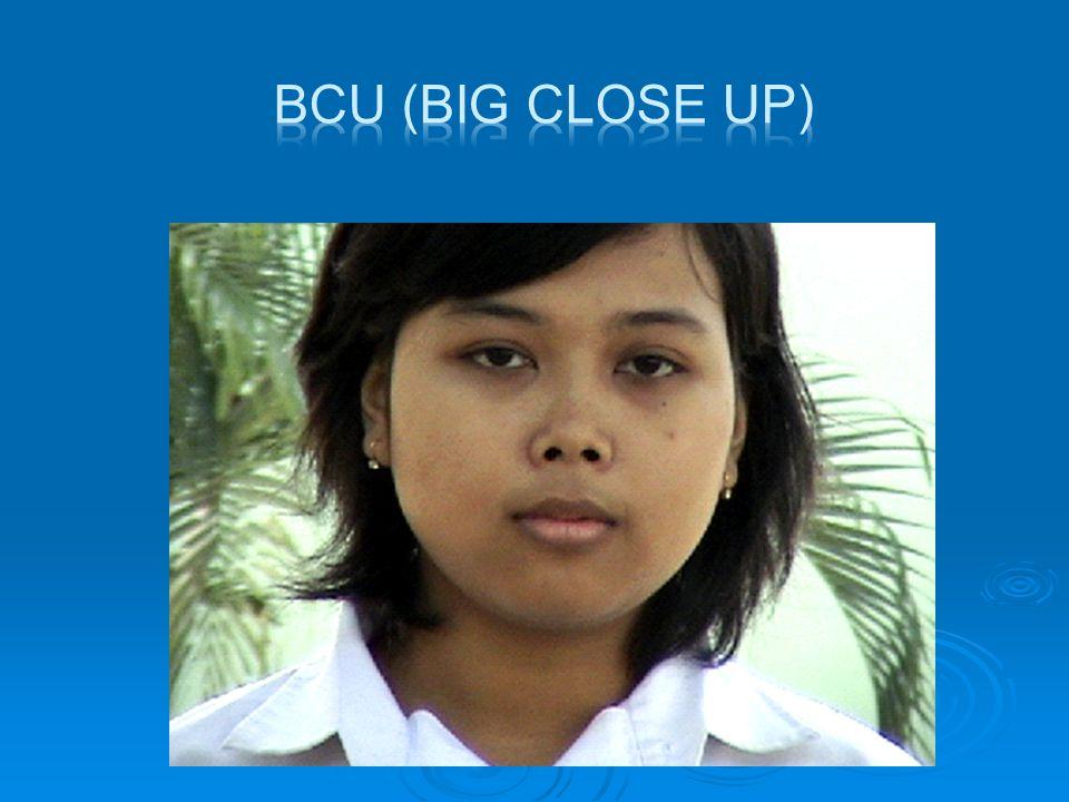  ECU ( Extrime Close Up)  Shot yang menampilkan bagian tertentu dari tubuh manusia.