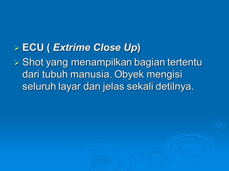  ECU ( Extrime Close Up)  Shot yang menampilkan bagian tertentu dari tubuh manusia. Obyek mengisi seluruh layar dan jelas sekali detilnya.