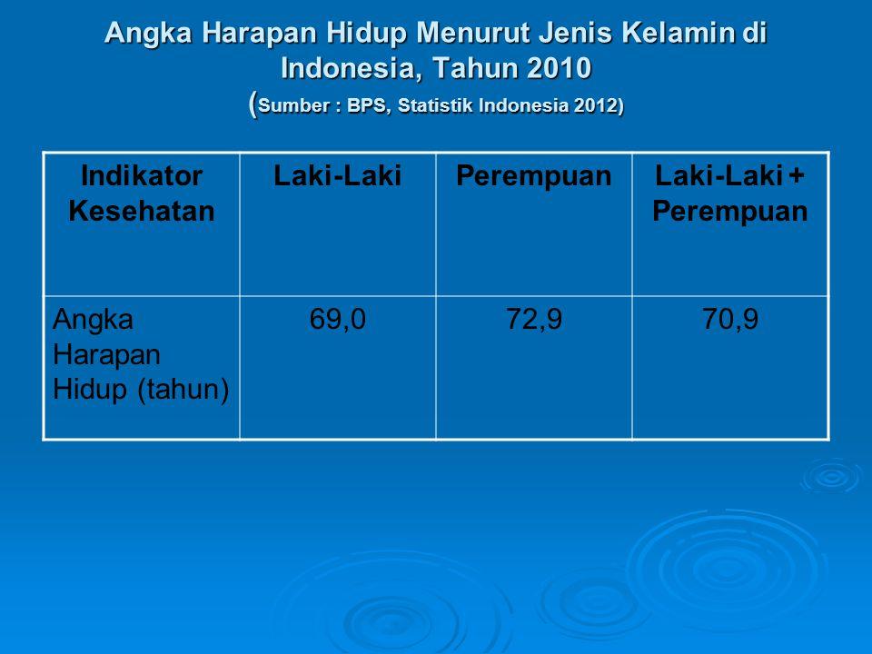 Angka Harapan Hidup Menurut Jenis Kelamin di Indonesia, Tahun 2010 ( Sumber : BPS, Statistik Indonesia 2012) Indikator Kesehatan Laki-LakiPerempuanLak