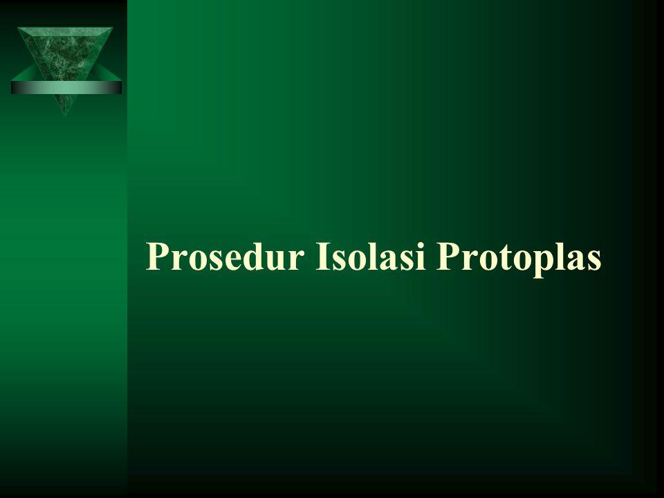 Isolasi Protoplas adalah usaha untuk menghasilkan protoplas sebanyaknya dari suatu jaringan Protoplas dapat diperoleh dengan jalan maserasi, yaitu pem