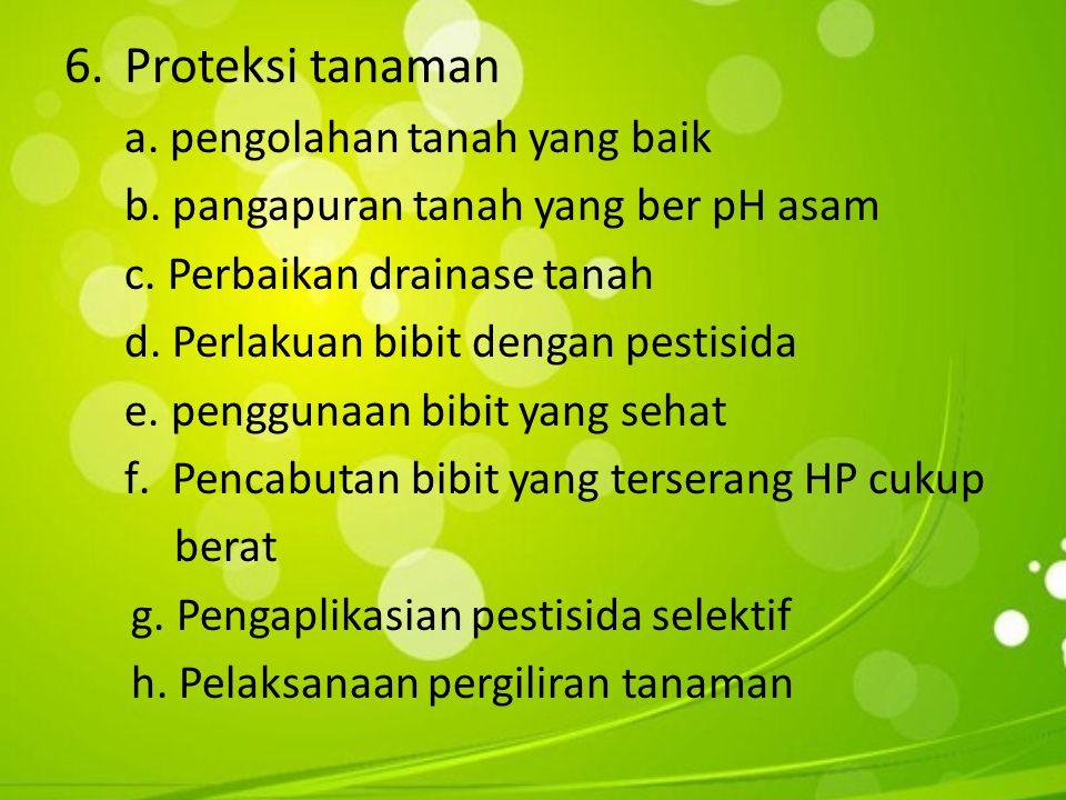 6.Proteksi tanaman a.pengolahan tanah yang baik b.