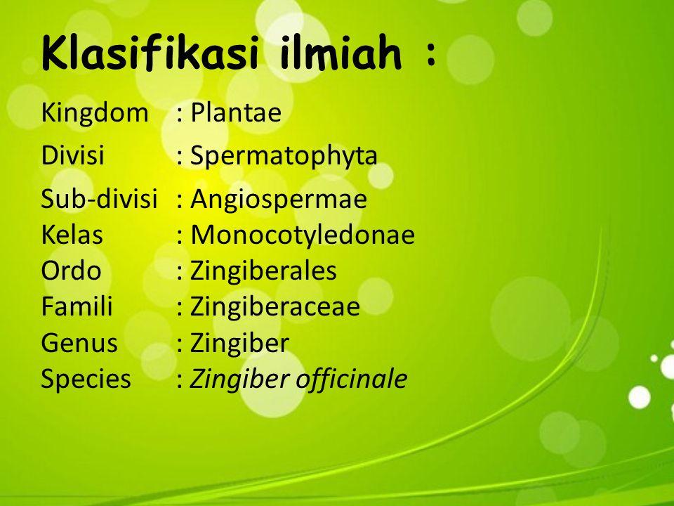 Klasifikasi ilmiah : Kingdom: Plantae Divisi: Spermatophyta Sub-divisi: Angiospermae Kelas: Monocotyledonae Ordo: Zingiberales Famili: Zingiberaceae Genus: Zingiber Species: Zingiber officinale