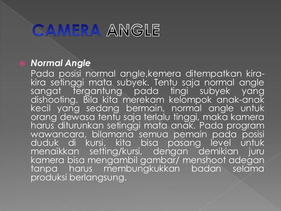  Normal Angle Pada posisi normal angle,kemera ditempatkan kira- kira setinggi mata subyek.
