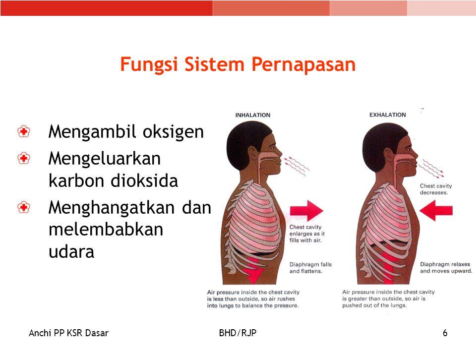 Anchi PP KSR DasarBHD/RJP7 Susunan Saluran Pernapasan Jalan napas dimulai dari: Mulut/Hidung Saluran Napas Atas Saluran Napas Bawah Alveolus