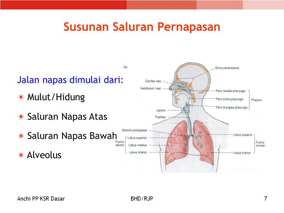 Anchi PP KSR DasarBHD/RJP8 Fungsi Sistem Sirkulasi Alat angkut: O2, CO2, zat nutrisi, zat sampah Pertahanan tubuh terhadap penyakit dan racun Mengedarkan panas ke seluruh tubuh Membantu membekukan darah bila terjadi luka