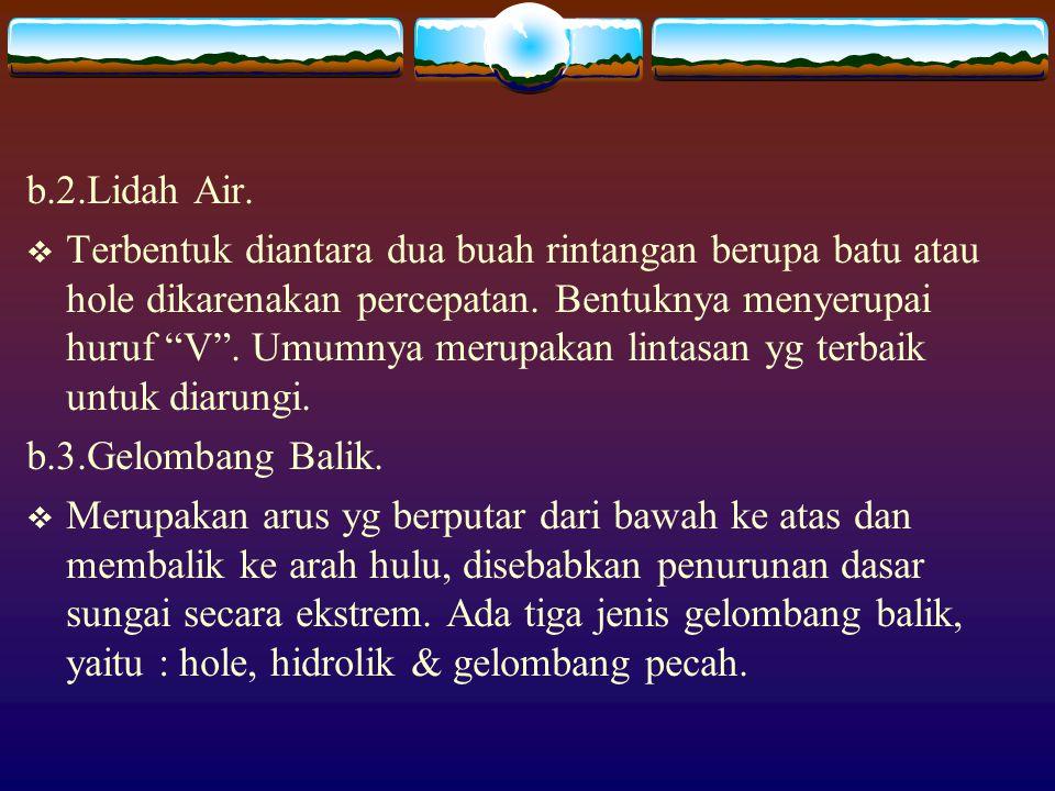 b.2.Lidah Air.