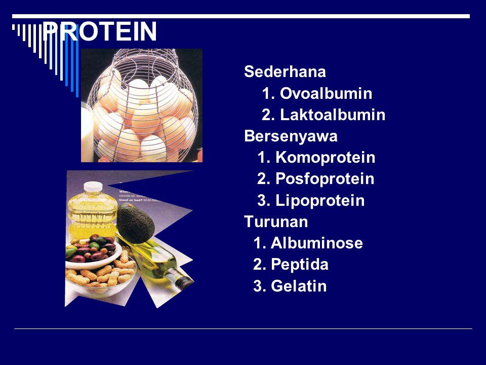 PROTEIN Sederhana 1. Ovoalbumin 2. Laktoalbumin Bersenyawa 1. Komoprotein 2. Posfoprotein 3. Lipoprotein Turunan 1. Albuminose 2. Peptida 3. Gelatin