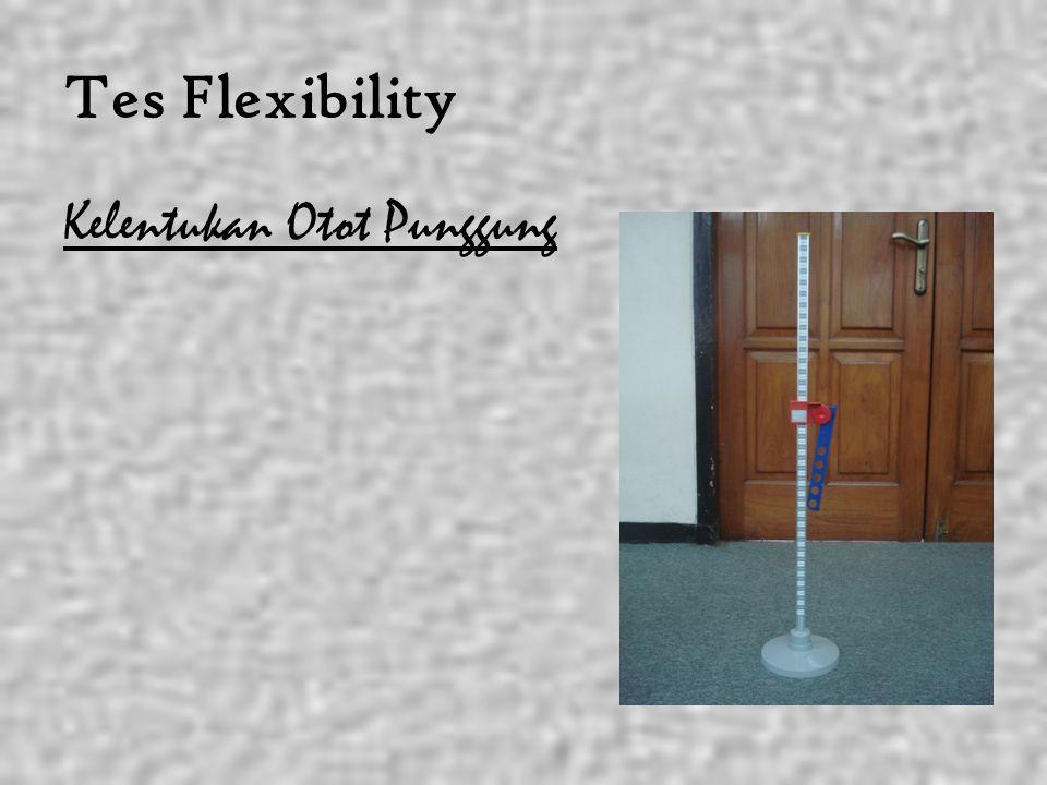 Tes Flexibility Kelentukan Otot Punggung