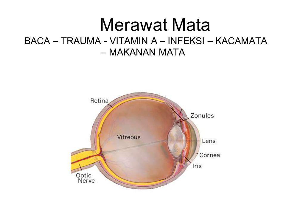 Merawat Mata BACA – TRAUMA - VITAMIN A – INFEKSI – KACAMATA – MAKANAN MATA