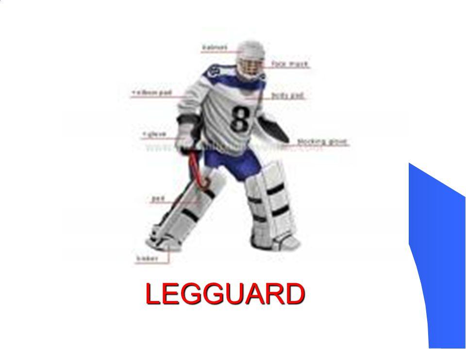 LEGGUARD