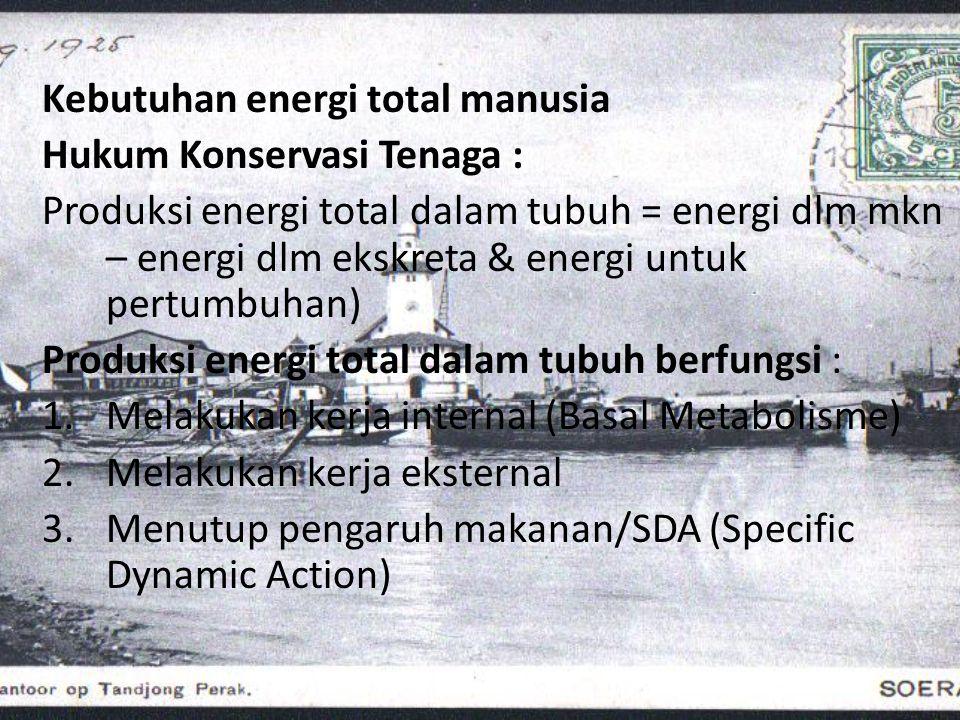 Kebutuhan energi total manusia Hukum Konservasi Tenaga : Produksi energi total dalam tubuh = energi dlm mkn – energi dlm ekskreta & energi untuk pertu