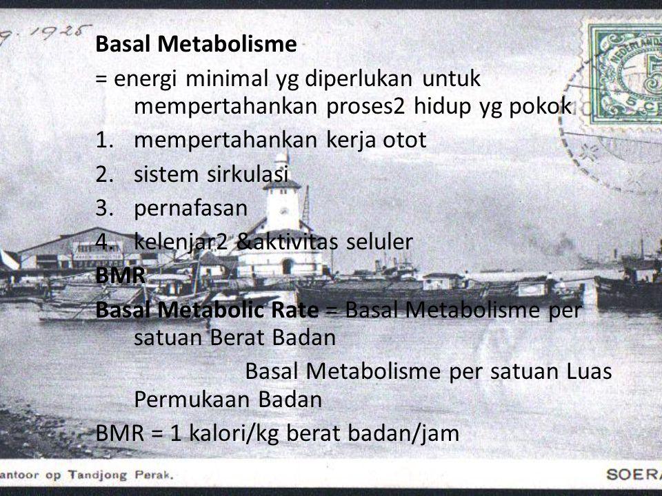 Basal Metabolisme = energi minimal yg diperlukan untuk mempertahankan proses2 hidup yg pokok 1.mempertahankan kerja otot 2.sistem sirkulasi 3.pernafas