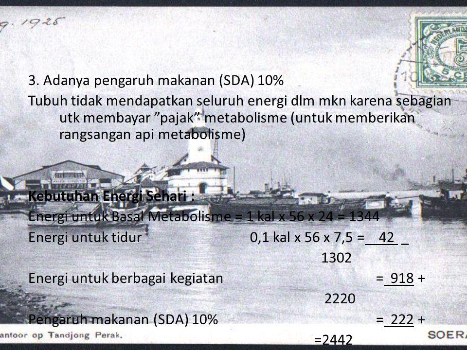 """3. Adanya pengaruh makanan (SDA) 10% Tubuh tidak mendapatkan seluruh energi dlm mkn karena sebagian utk membayar """"pajak"""" metabolisme (untuk memberikan"""