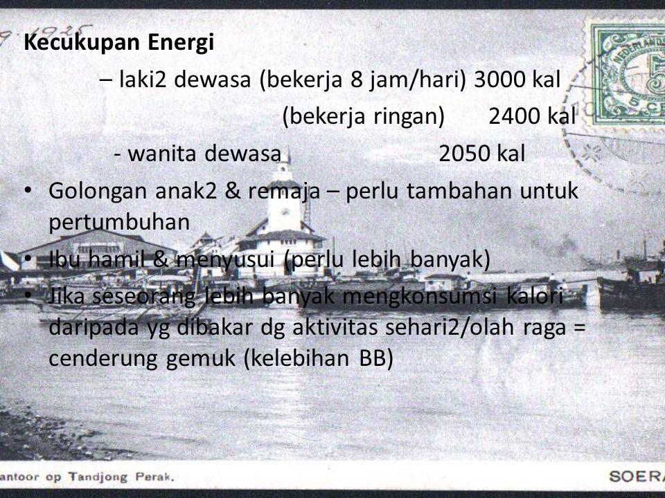 Kecukupan Energi – laki2 dewasa (bekerja 8 jam/hari) 3000 kal (bekerja ringan) 2400 kal - wanita dewasa 2050 kal • Golongan anak2 & remaja – perlu tam