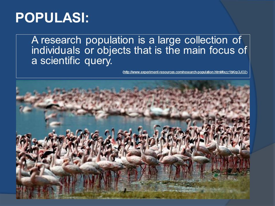 POPULASI: A research population is a large collection of individuals or objects that is the main focus of a scientific query.
