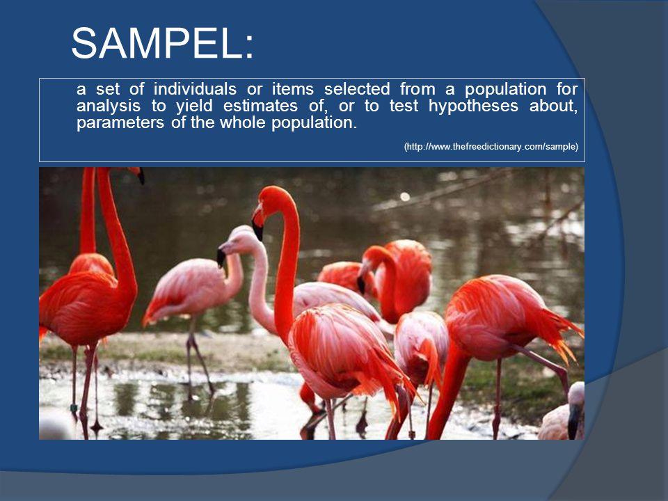KRITERIA SAMPEL YANG BAIK: Sampel yang menghasilkan kesimpulan dapat digeneralisasi untuk populasi.