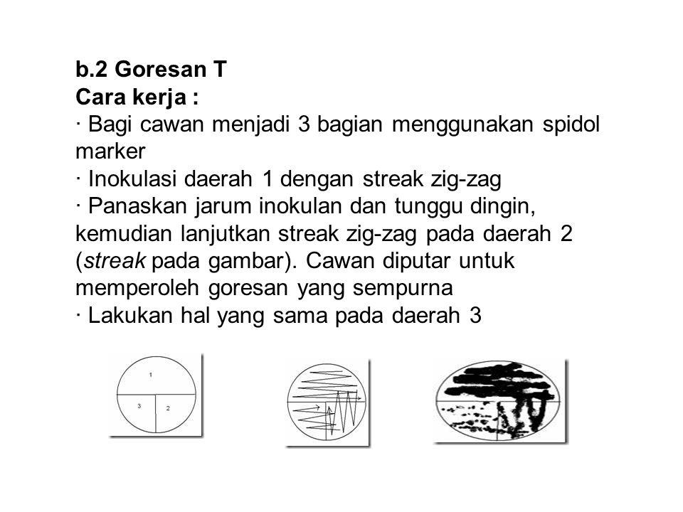 b.2 Goresan T Cara kerja : · Bagi cawan menjadi 3 bagian menggunakan spidol marker · Inokulasi daerah 1 dengan streak zig-zag · Panaskan jarum inokula