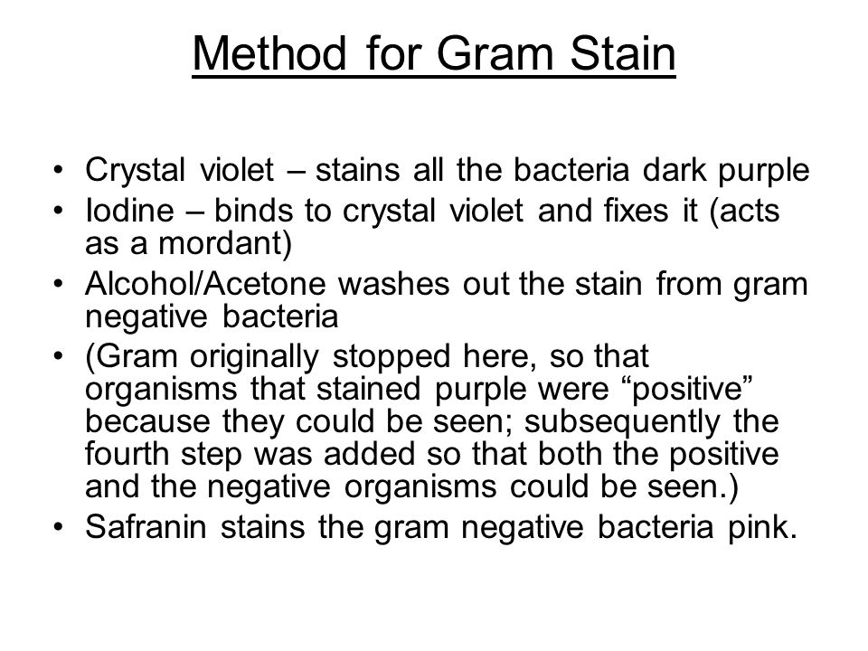 Method for Gram Stain •Crystal violet – stains all the bacteria dark purple •Iodine – binds to crystal violet and fixes it (acts as a mordant) •Alcohol/Acetone washes out the stain from gram negative bacteria •(Gram originally stopped here, so that organisms that stained purple were positive because they could be seen; subsequently the fourth step was added so that both the positive and the negative organisms could be seen.) •Safranin stains the gram negative bacteria pink.