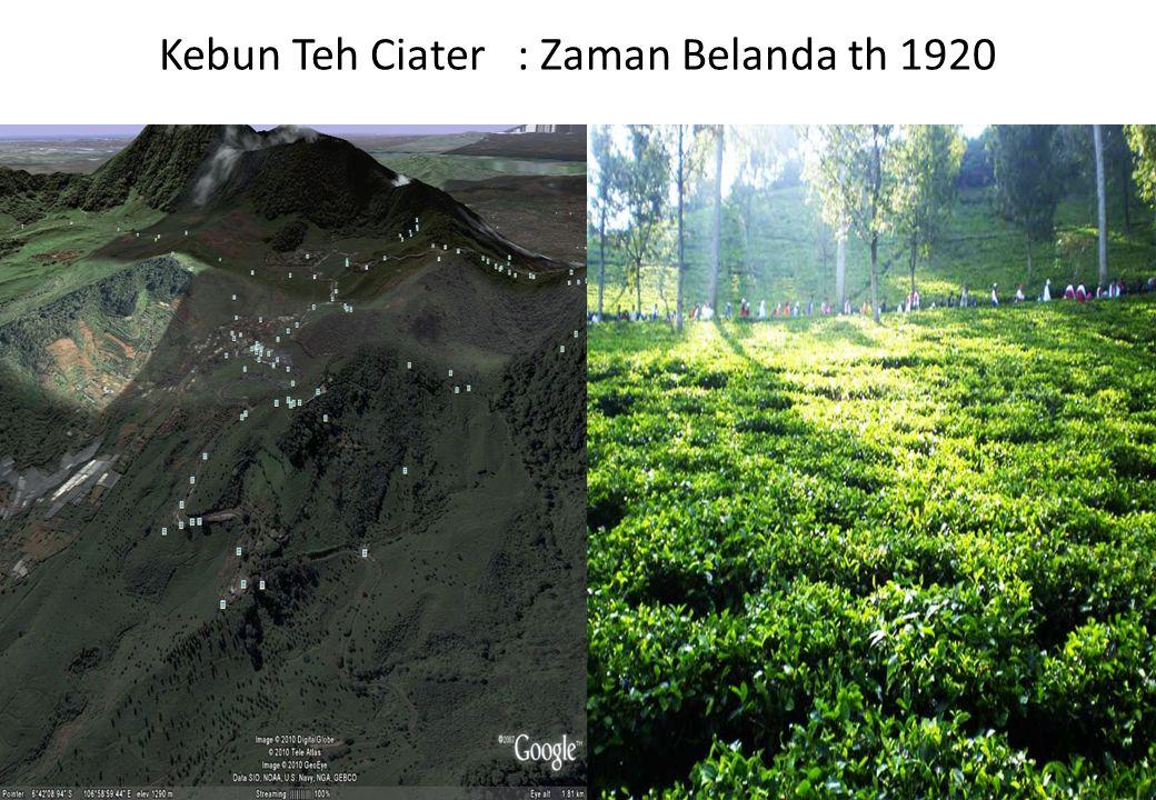 Kebun Teh Ciater : Zaman Belanda th 1920