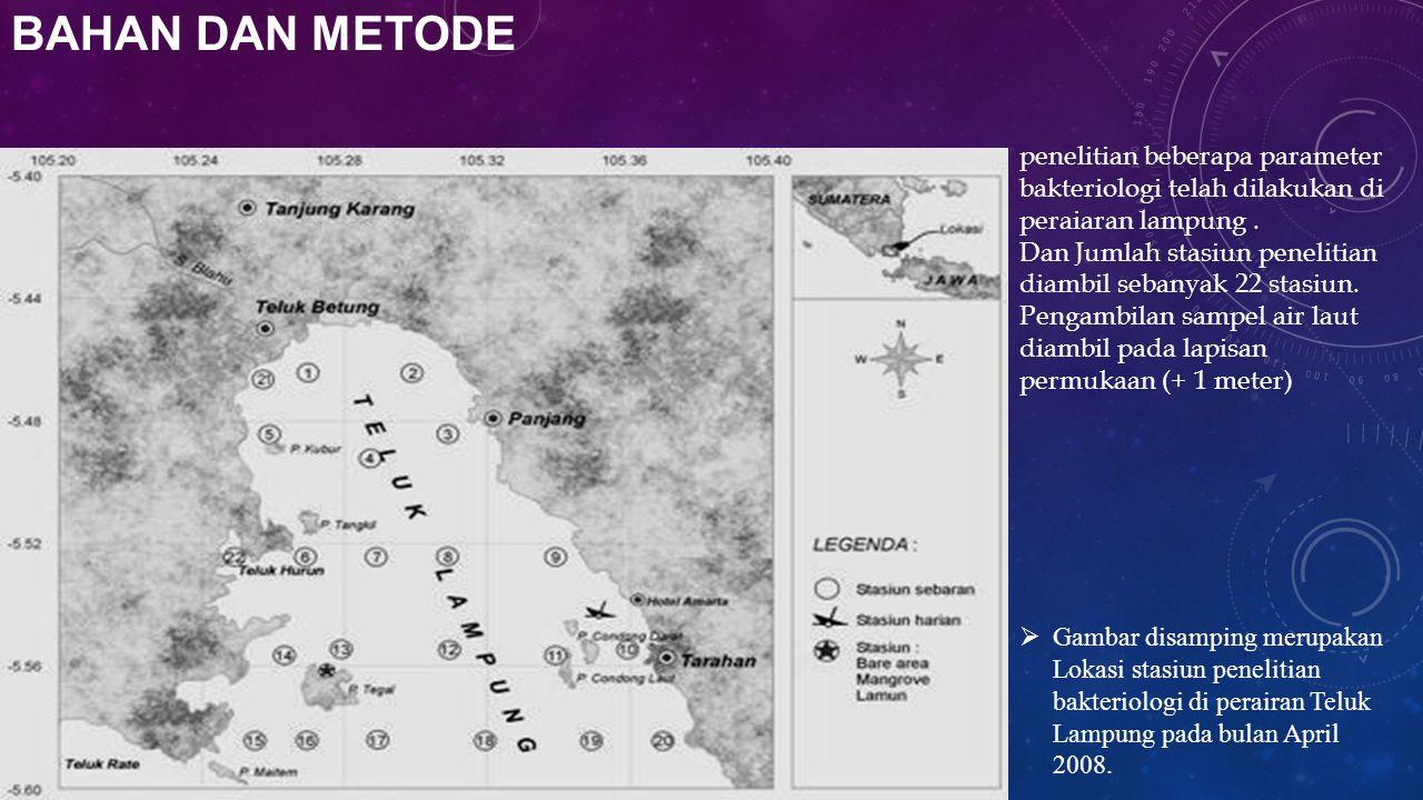 BAHAN DAN METODE  Gambar disamping merupakan Lokasi stasiun penelitian bakteriologi di perairan Teluk Lampung pada bulan April 2008. penelitian beber