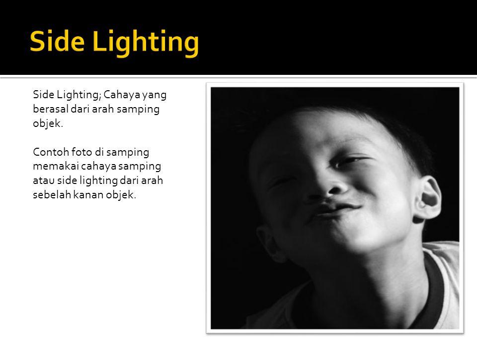 Side Lighting; Cahaya yang berasal dari arah samping objek. Contoh foto di samping memakai cahaya samping atau side lighting dari arah sebelah kanan o