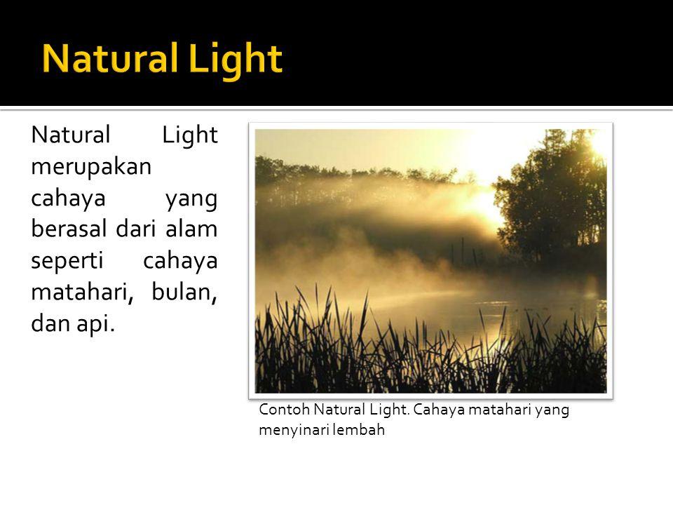 Natural Light merupakan cahaya yang berasal dari alam seperti cahaya matahari, bulan, dan api. Contoh Natural Light. Cahaya matahari yang menyinari le