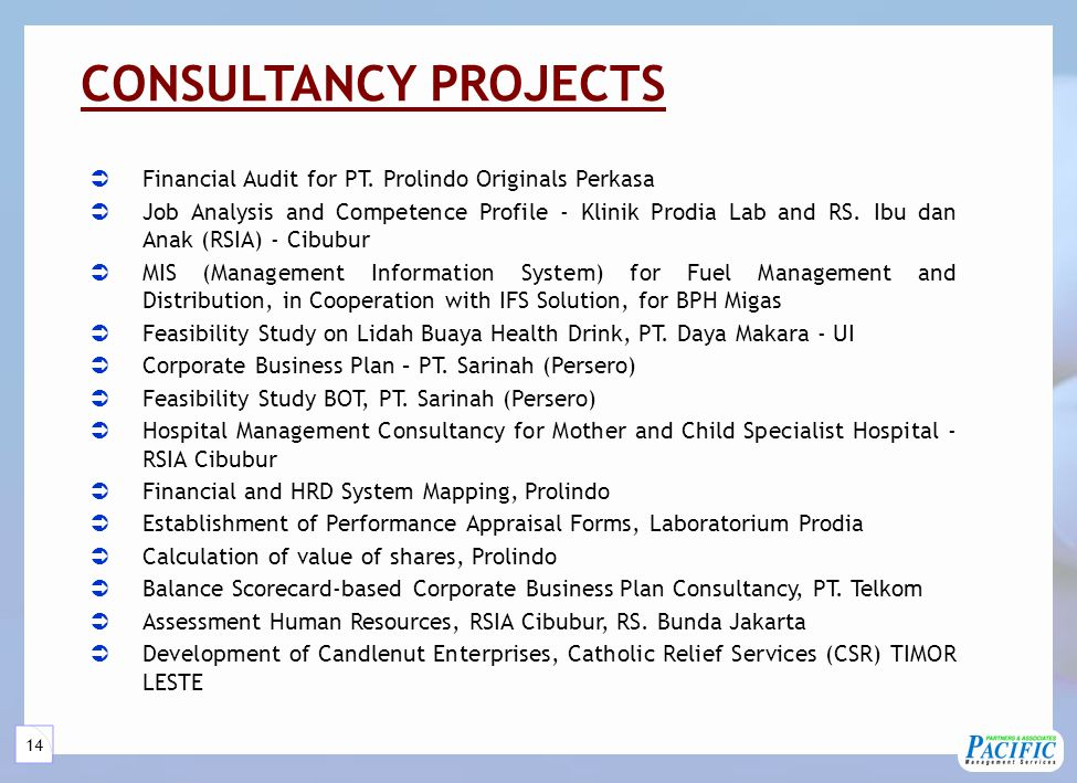 14 CONSULTANCY PROJECTS  Financial Audit for PT.