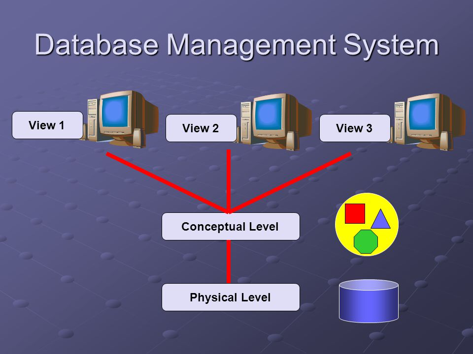 Database Management System Physical Level Conceptual Level View 3View 2 View 1