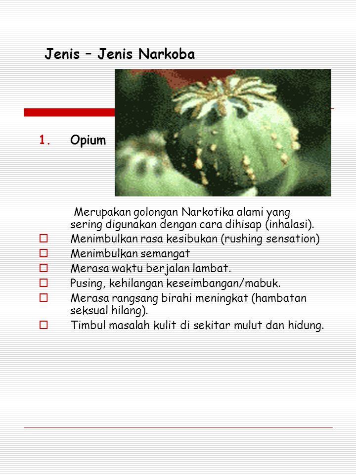 Jenis – Jenis Narkoba 1.Opium Merupakan golongan Narkotika alami yang sering digunakan dengan cara dihisap (inhalasi).