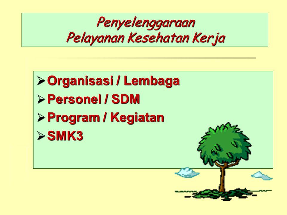 Penyelenggaraan Pelayanan Kesehatan Kerja  Organisasi / Lembaga  Personel / SDM  Program / Kegiatan  SMK3