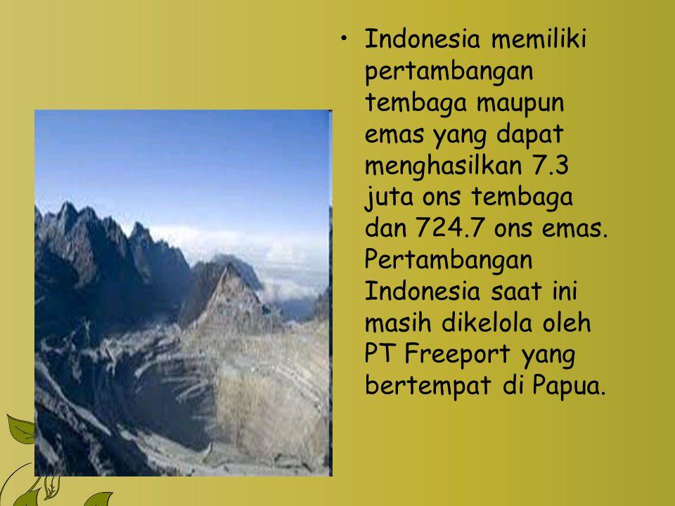 Indonesia memiliki pertambangan tembaga maupun emas yang dapat menghasilkan 7.3 juta ons tembaga dan 724.7 ons emas. Pertambangan Indonesia saat ini m