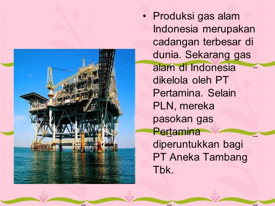 Produksi gas alam Indonesia merupakan cadangan terbesar di dunia. Sekarang gas alam di Indonesia dikelola oleh PT Pertamina. Selain PLN, mereka pasoka