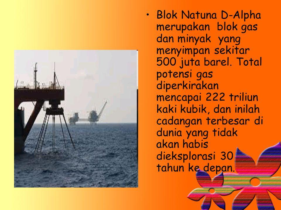 Blok Natuna D-Alpha merupakan blok gas dan minyak yang menyimpan sekitar 500 juta barel. Total potensi gas diperkirakan mencapai 222 triliun kaki kubi
