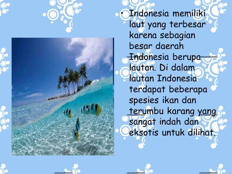 Indonesia memiliki laut yang terbesar karena sebagian besar daerah Indonesia berupa lautan.