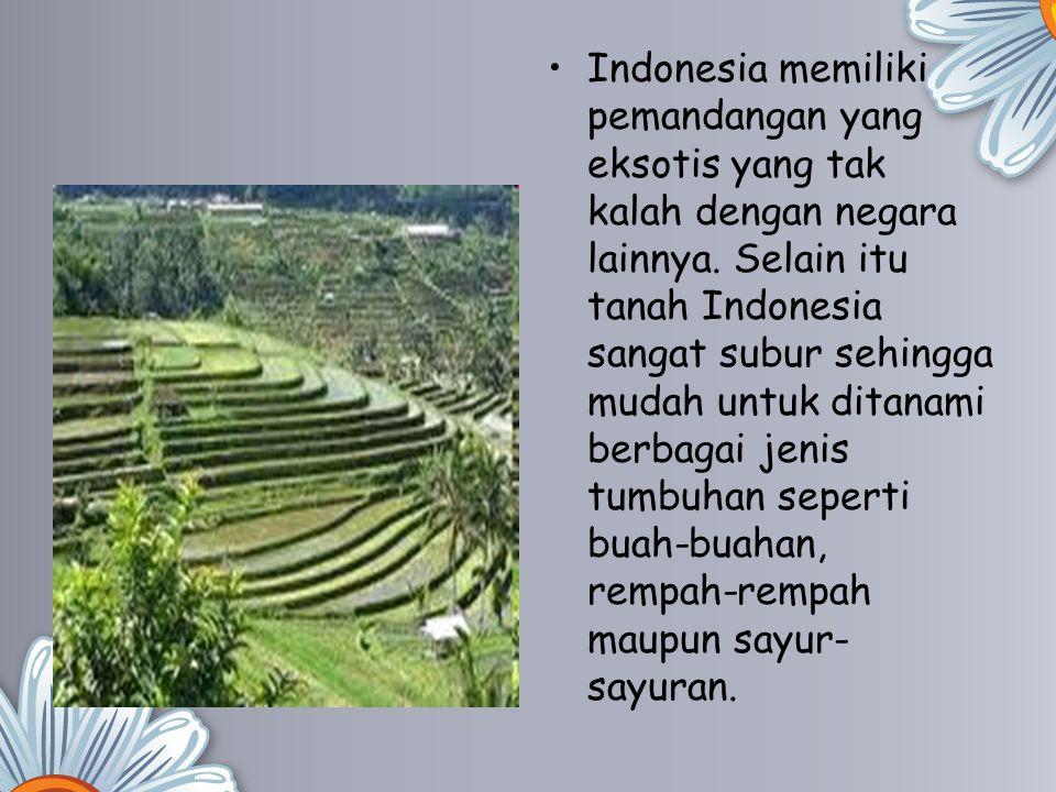 Indonesia memiliki pemandangan yang eksotis yang tak kalah dengan negara lainnya. Selain itu tanah Indonesia sangat subur sehingga mudah untuk ditanam