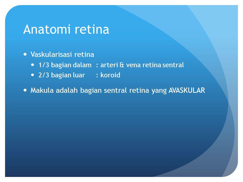 Anatomi retina Vaskularisasi retina 1/3 bagian dalam : arteri & vena retina sentral 2/3 bagian luar: koroid Makula adalah bagian sentral retina yang A