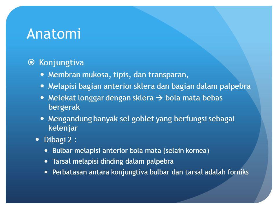Anatomi  Konjungtiva Membran mukosa, tipis, dan transparan, Melapisi bagian anterior sklera dan bagian dalam palpebra Melekat longgar dengan sklera 