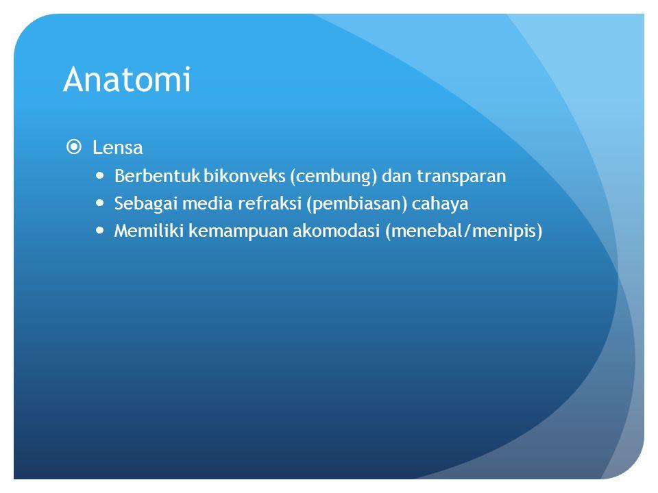 Anatomi  Lensa Berbentuk bikonveks (cembung) dan transparan Sebagai media refraksi (pembiasan) cahaya Memiliki kemampuan akomodasi (menebal/menipis)