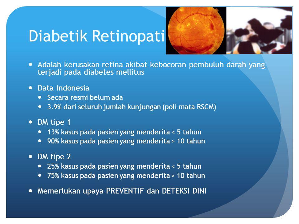 Diabetik Retinopati Adalah kerusakan retina akibat kebocoran pembuluh darah yang terjadi pada diabetes mellitus Data Indonesia Secara resmi belum ada