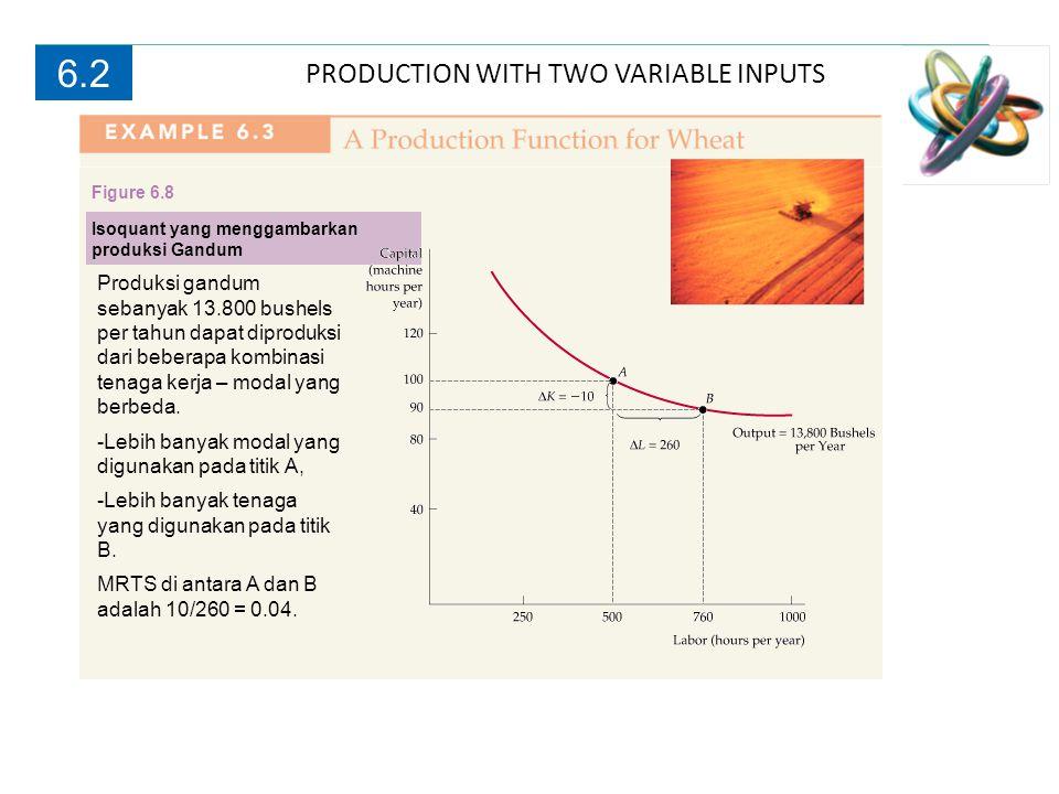 PRODUCTION WITH TWO VARIABLE INPUTS 6.2 Produksi gandum sebanyak 13.800 bushels per tahun dapat diproduksi dari beberapa kombinasi tenaga kerja – moda