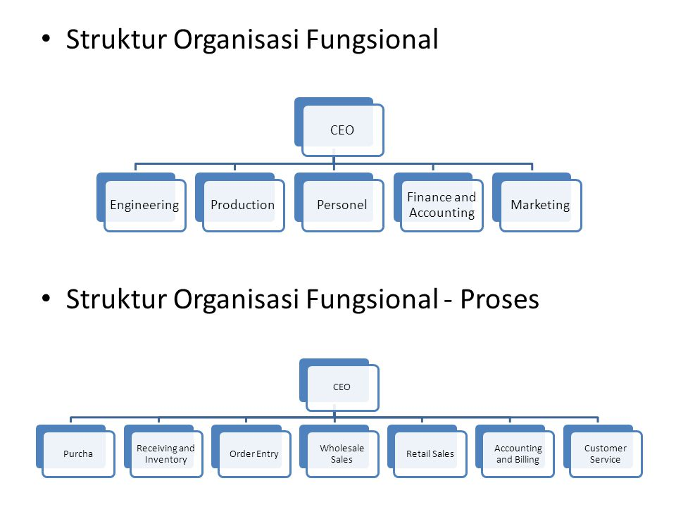 Struktur Organisasi Fungsional Struktur Organisasi Fungsional - Proses CEOEngineeringProductionPersonel Finance and Accounting Marketing CEOPurcha Rec