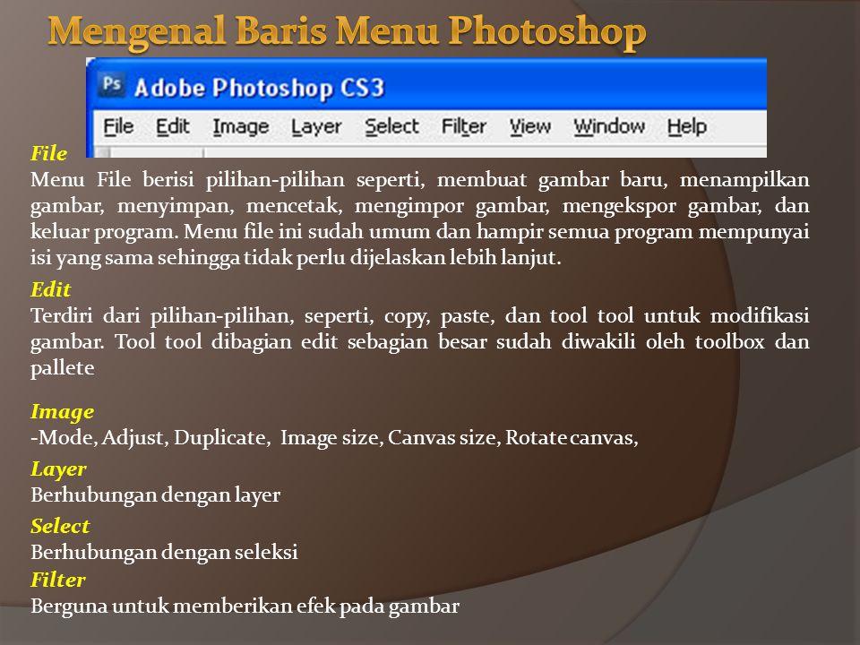 File Menu File berisi pilihan-pilihan seperti, membuat gambar baru, menampilkan gambar, menyimpan, mencetak, mengimpor gambar, mengekspor gambar, dan keluar program.