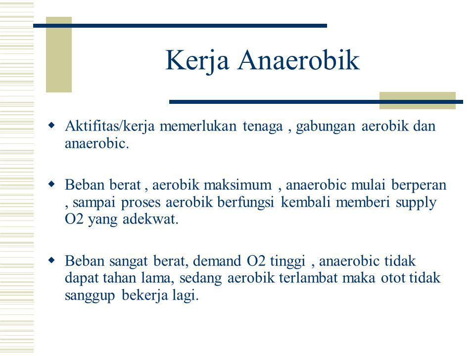Kerja Anaerobik  Aktifitas/kerja memerlukan tenaga, gabungan aerobik dan anaerobic.  Beban berat, aerobik maksimum, anaerobic mulai berperan, sampai