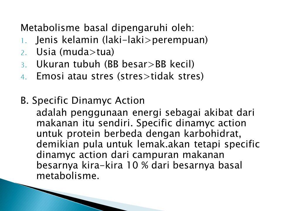 Metabolisme basal dipengaruhi oleh: 1. Jenis kelamin (laki-laki>perempuan) 2. Usia (muda>tua) 3. Ukuran tubuh (BB besar>BB kecil) 4. Emosi atau stres