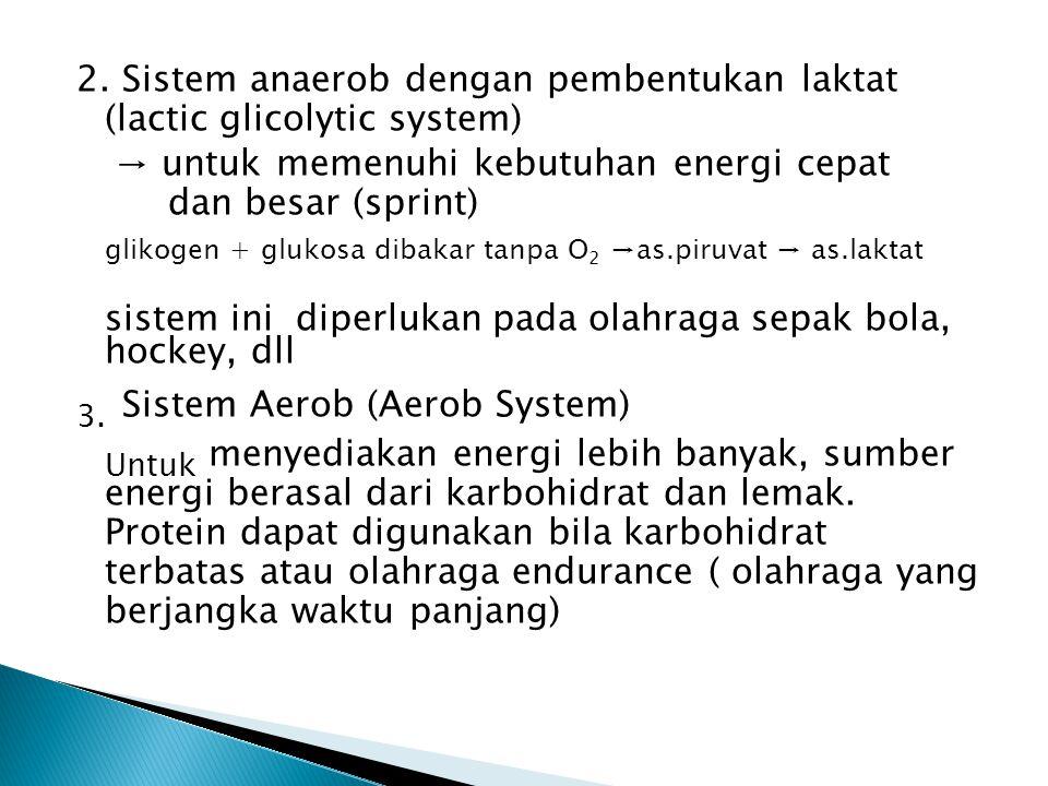 2. Sistem anaerob dengan pembentukan laktat (lactic glicolytic system) → untuk memenuhi kebutuhan energi cepat dan besar (sprint) glikogen + glukosa d