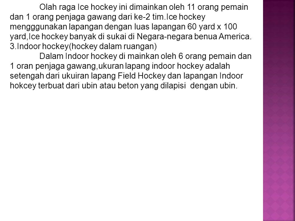 Olah raga Ice hockey ini dimainkan oleh 11 orang pemain dan 1 orang penjaga gawang dari ke-2 tim.Ice hockey mengggunakan lapangan dengan luas lapangan
